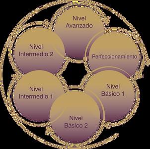programa_curricular_cíclico_baja.png