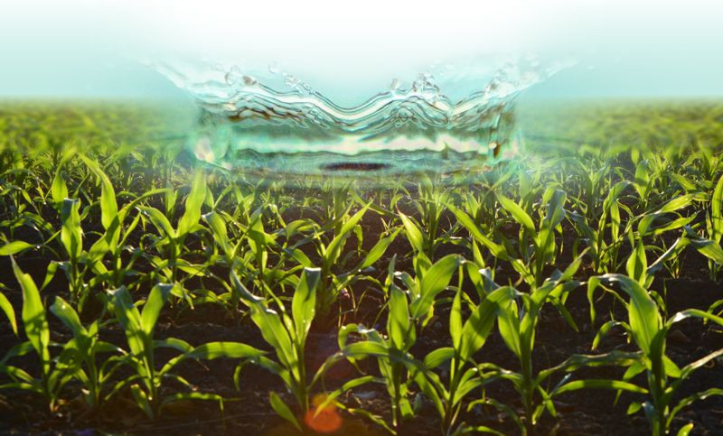 Eko Bojacá se suma a las soluciones contra la escasez de agua en el mundo