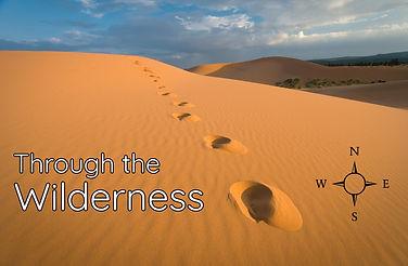 Through the Wilderness Sermon Series Image.jpg