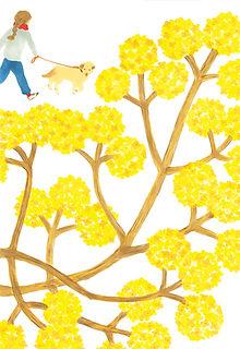 花に聞く vol.13 三椏