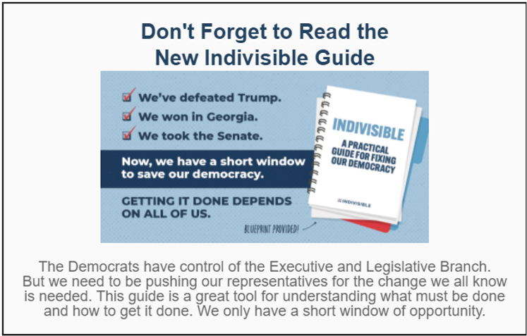 Indivisible guide email graphic.png