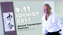 Διεθνές Σεμινάριο Aikido στην Αθηνα