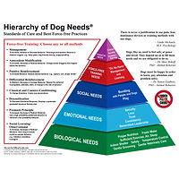 HierarchyofDogNeedsRevision_WebNoPPG.jpe