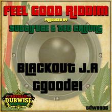 TDWR006-Subtifuge & Ted Ganung-Feel Good