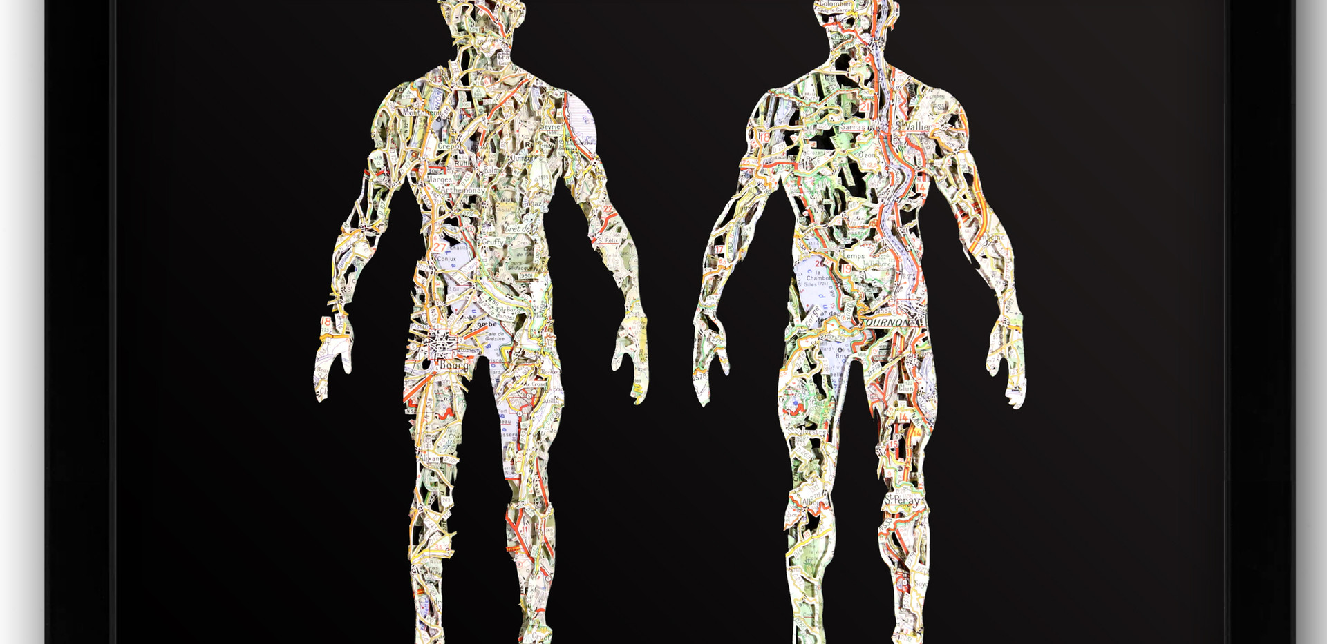 12x16 anatomy 1.jpg