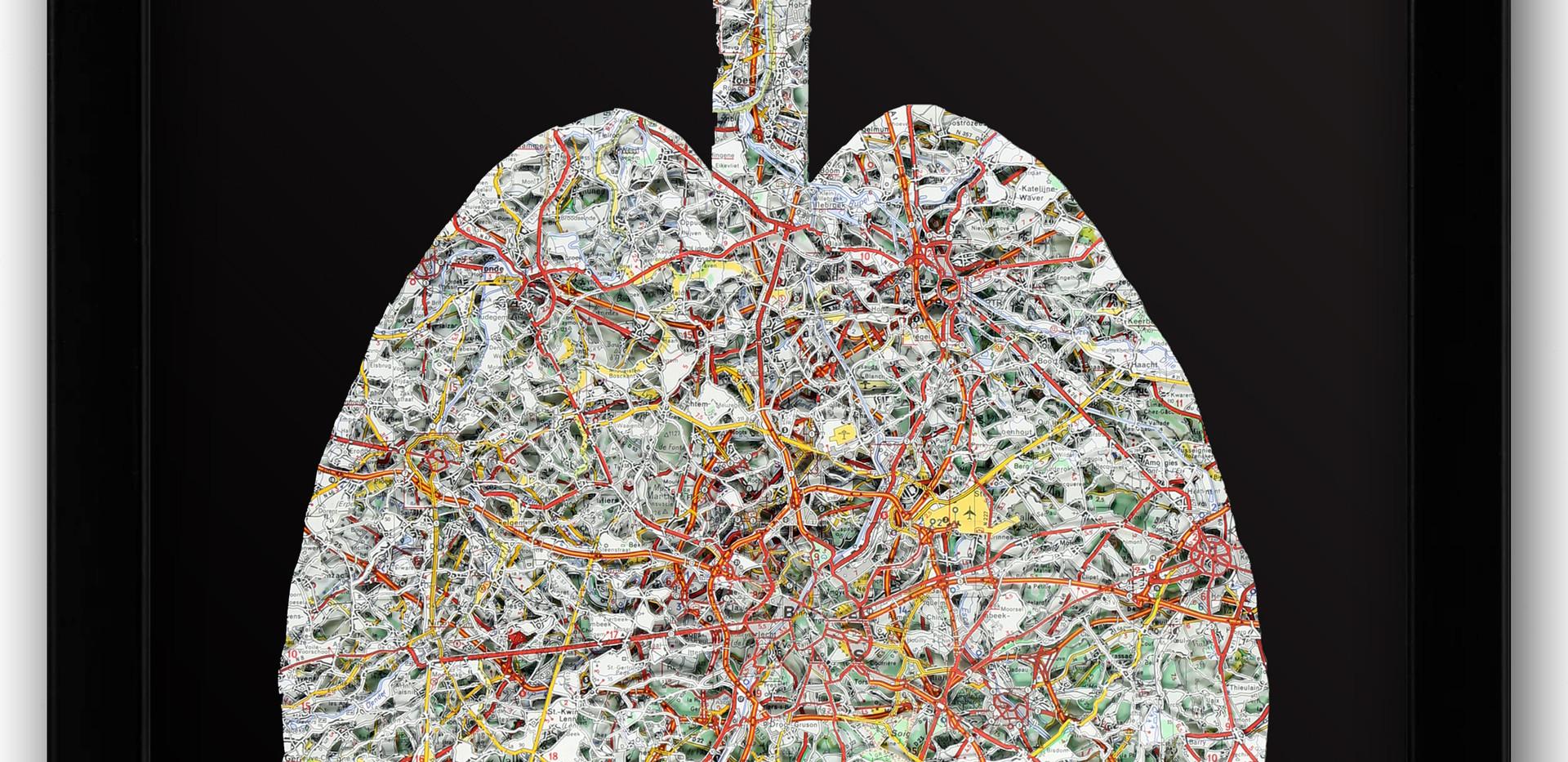 16x20 Lung.jpg