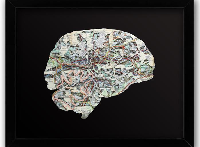 16x20 Brain Side.jpg