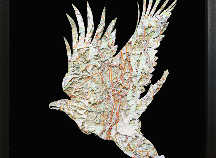 the eagle 16x20.JPG