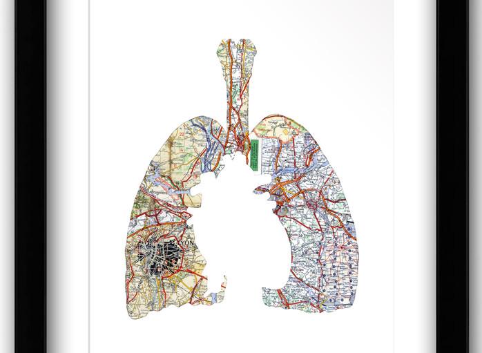 16x20 Heart Lung.jpg