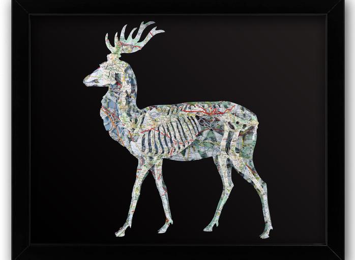 16x20 Deer .jpg