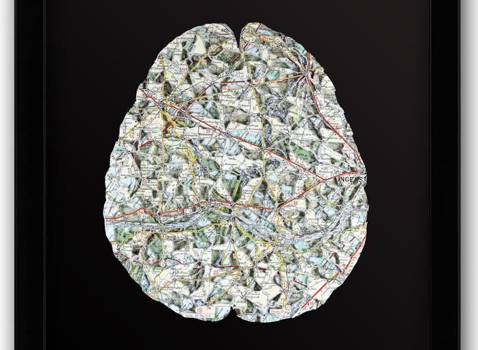 16x20 Brain Top.jpg