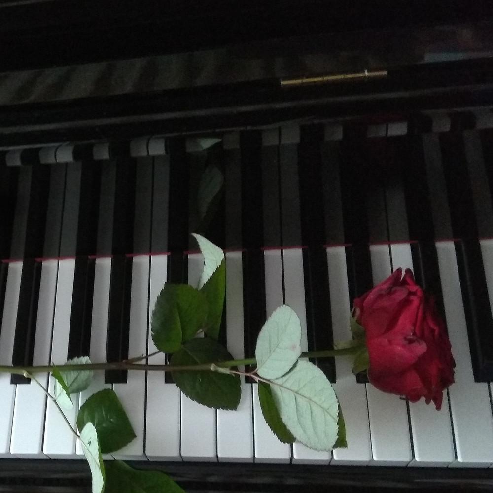 Chopin, piano, Galaxy Studios, Etudes