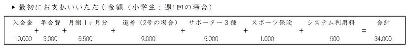 初回料金〔通常用〕.PNG