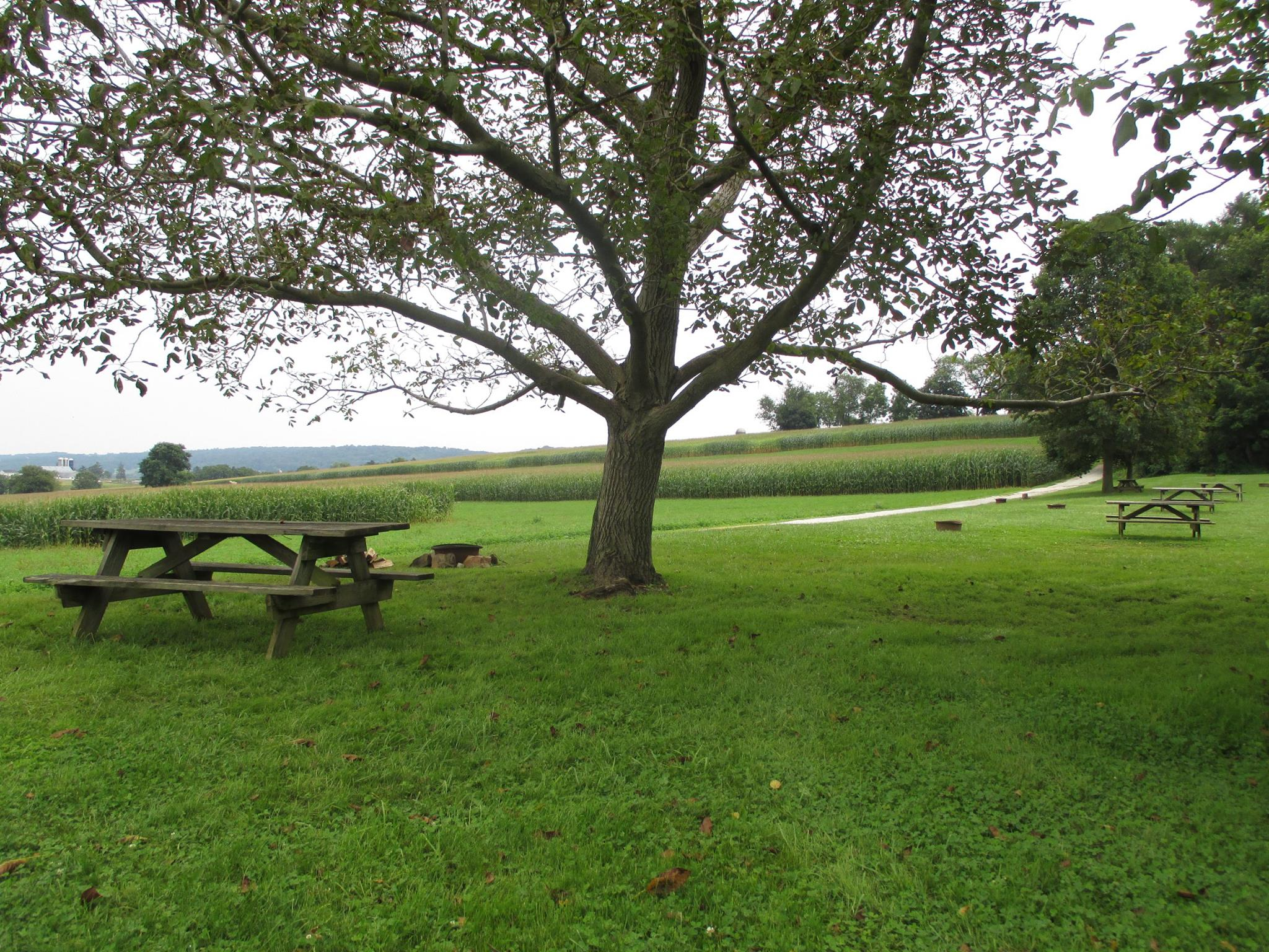 Sitting areas by Amish field