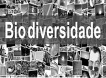 Biodiversidade_edited.png