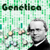 genetica.png