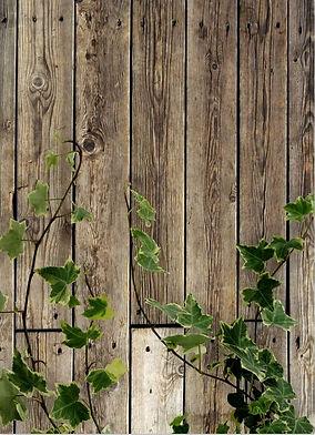5x7FT-Wooden-Floor-Texture-Green-Vines-P