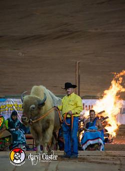 Daryl Custer - Photographer-253