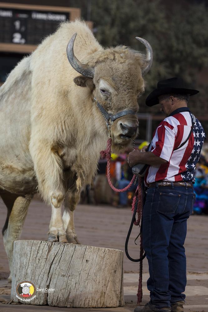 Daryl-Custer-2018-1675