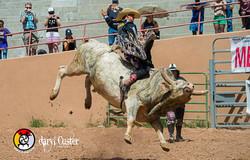Daryl Custer - Photographer-293
