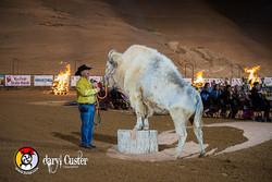 Daryl Custer - Photographer-257
