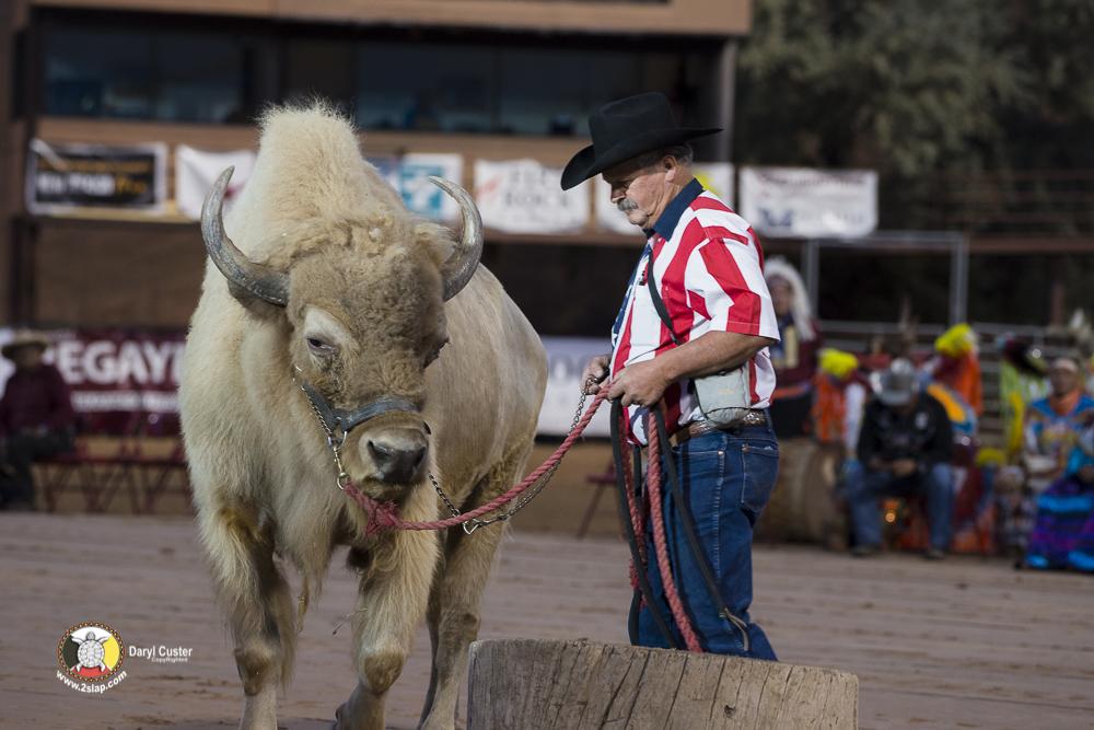 Daryl-Custer-2018-1669
