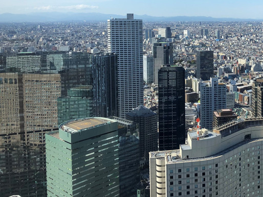 Are Japan's Largest Companies Shrinking?