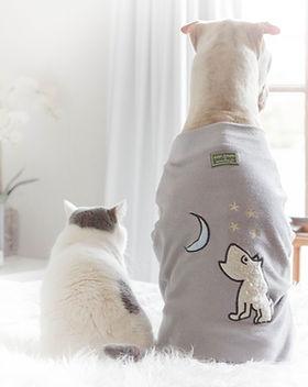 chiens robes