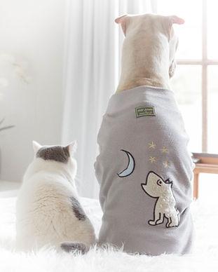 cüppeli köpekler