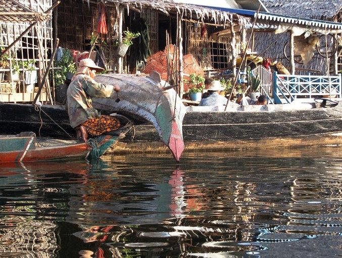 Cambodge_TonleSapSangkerPrek_20111116_48