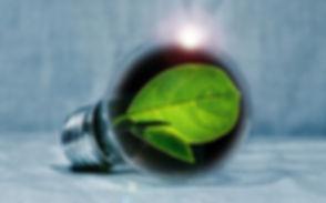light-bulb-2631864_1920.jpg