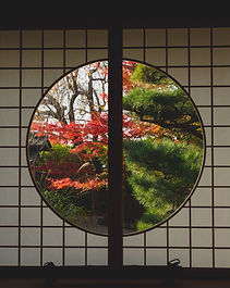 pexels-ryutaro-tsukata-6249544.jpg