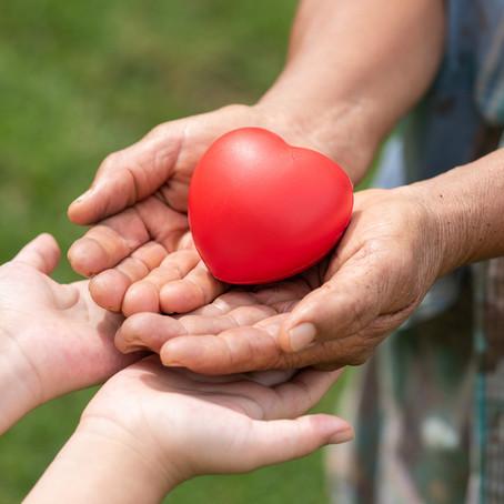 Você sabe como encantar os doadores?
