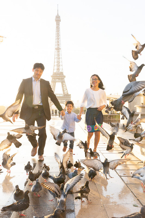 Family is runing through the pigeons