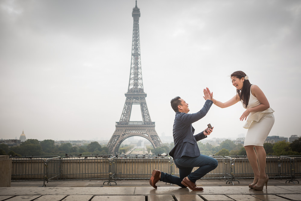 happy proposal in Paris