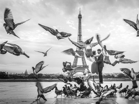 Short session with Parisian pigeons!