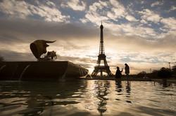silhouette proposal Eiffel tower