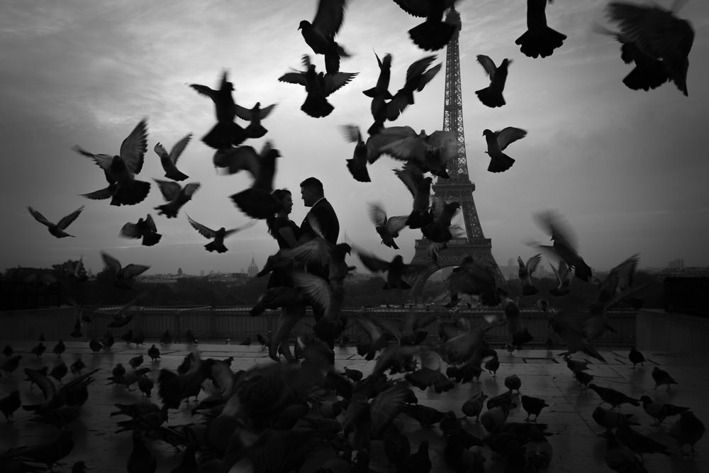 couple with pigeon at sunset paris