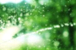 芝生のスプリンクラー抽象
