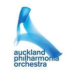 APO logo.jpg