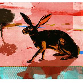 'Hare'