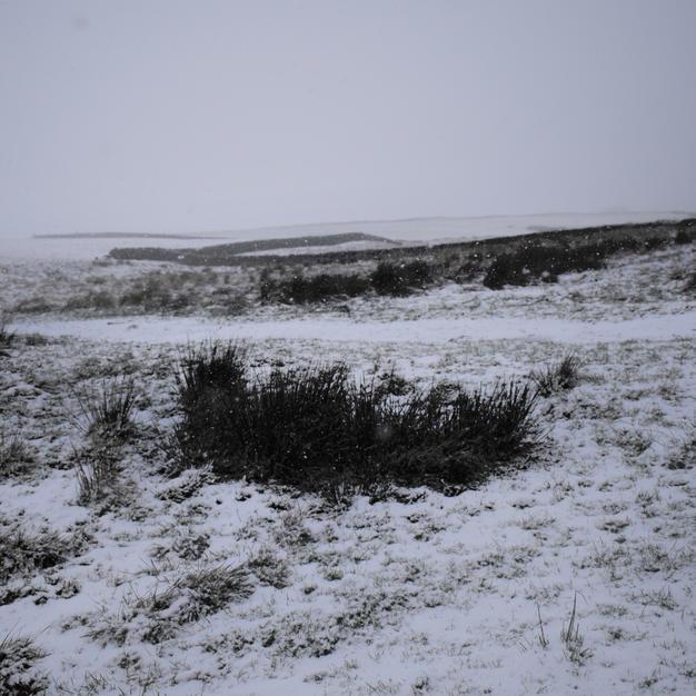 Snow And Walls