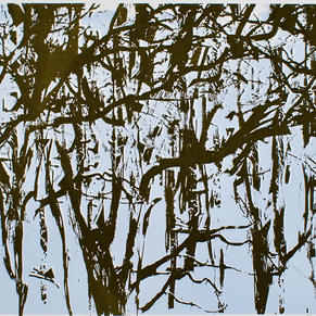 'Branches'