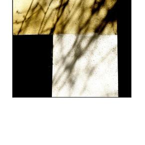 'Wall Shadow'
