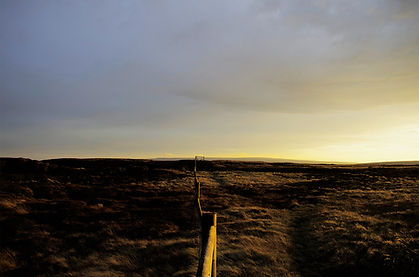 Land line low res.jpg