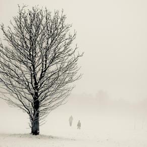 Distant Figures In Snow