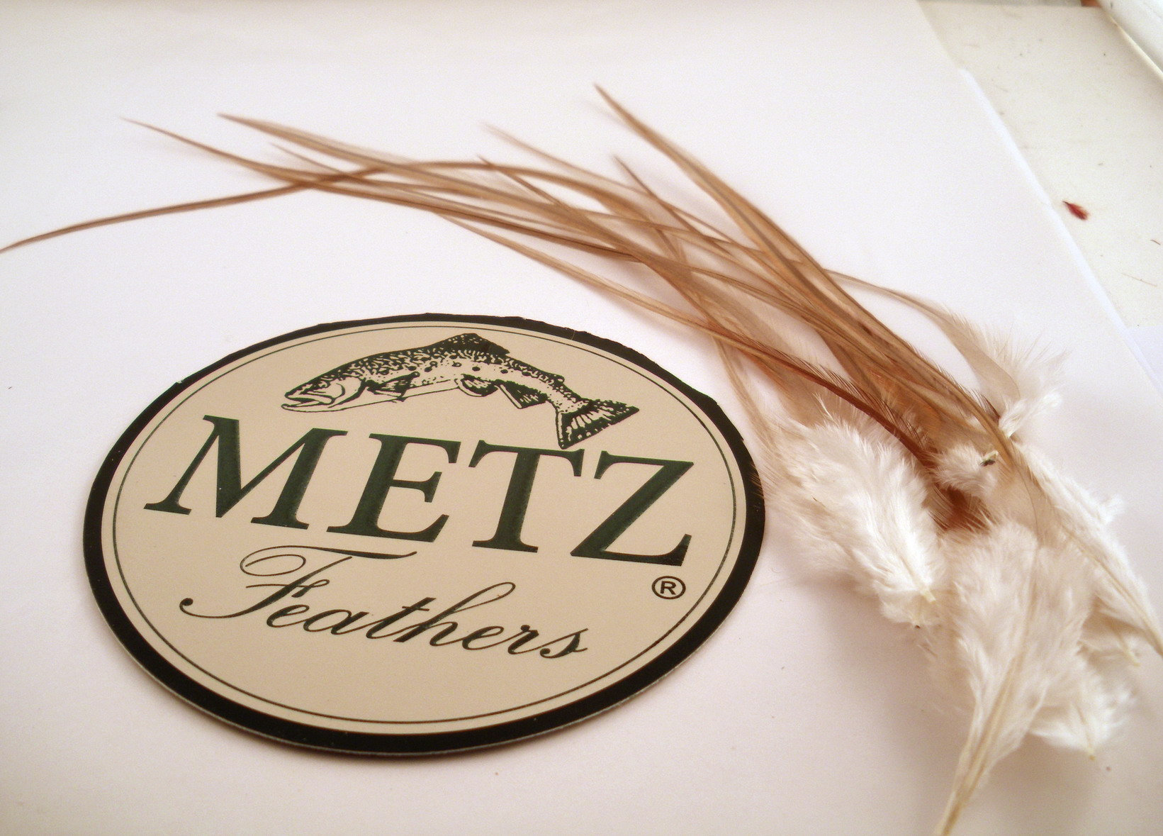 Rusty dun (grey ginger ) rooster saddle hackle 6 to 12 inches