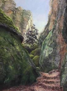 Wandering the Pinnacles