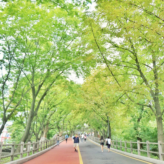 【首爾輕遊散策】南山半天遊