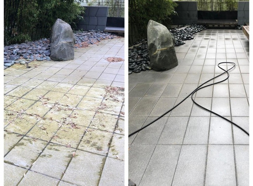 Knightsbridge Are Vancouver's Pond Cleaning Experts